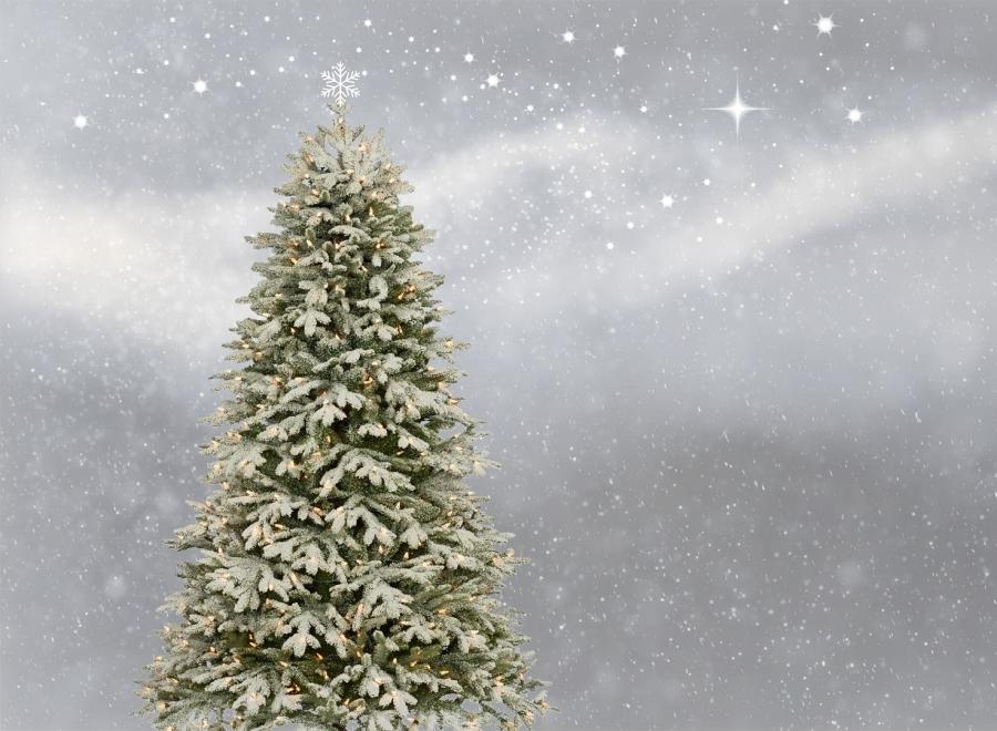 Weihnachtsferien des Regionalmanagements