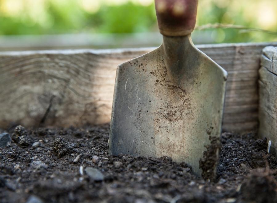 Vortragsreihe zum naturnahen Gärtnern